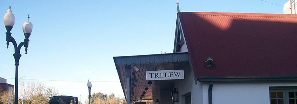 Ya se puede usar la SUBE en Trelew pero por 90 días las monedas sirven